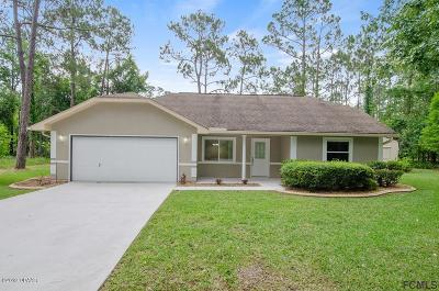 Palm Coast Single Family Home For Sale: 16 Eisenhower Place
