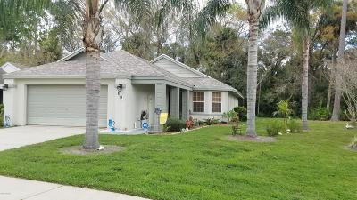 Daytona Beach Single Family Home For Sale: 113 Braeburn Circle