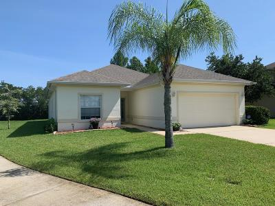 Port Orange Single Family Home For Sale: 5369 Cordgrass Bend Lane