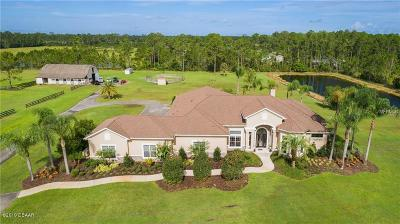 New Smyrna Beach Single Family Home For Sale: 260 Spring Forest Drive