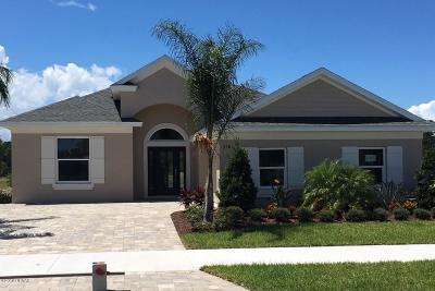New Smyrna Beach Single Family Home For Sale: 238 Venetian Palms Boulevard