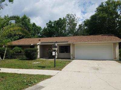 Daytona Beach, Daytona Beach Shores Single Family Home For Sale: 116 Village Lane