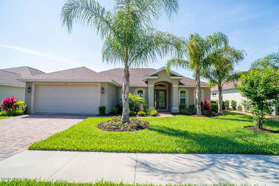 Palm Coast Single Family Home For Sale: 26 Arena Lake Drive