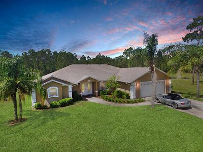 New Smyrna Beach Single Family Home For Sale: 135 Buckhorn Road