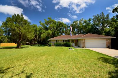 New Smyrna Beach Single Family Home For Sale: 2180 Pioneer Trail