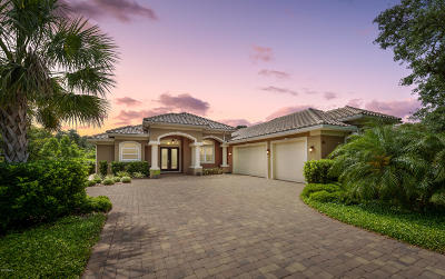 Palm Coast Single Family Home For Sale: 41 E Oak View Circle