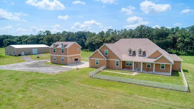 Ormond Beach Single Family Home For Sale: 2301 Warden Trail