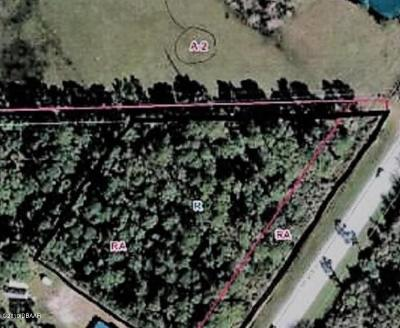 Volusia County Residential Lots & Land For Sale: State Rd 415