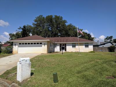 Ormond Beach Single Family Home For Sale: 11 Eileen Terrace