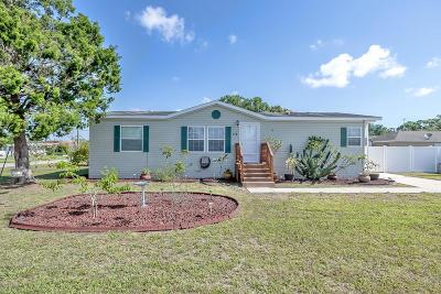 Port Orange Single Family Home For Sale: 174 Crowell Street