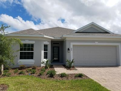 Ormond Beach Single Family Home For Sale: 33 Huntington Place