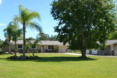 New Smyrna Beach Single Family Home For Sale: 3971 Langford Road