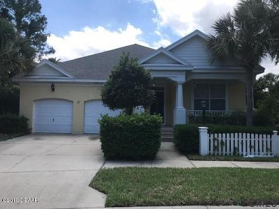 Palm Coast Single Family Home For Sale: 19 Flamingo Court
