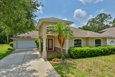 Ormond Beach Single Family Home For Sale: 68 Old Wiggins Lane