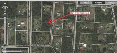 Volusia County Residential Lots & Land For Sale: 231 Pine Cone Lane