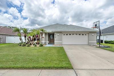 Port Orange Single Family Home For Sale: 6137 Sabal Point Circle