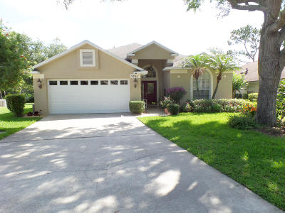 Volusia County Single Family Home For Sale: 3251 Vail View Court