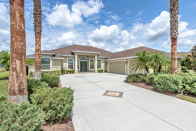 Volusia County Single Family Home For Sale: 572 Luna Bella Lane