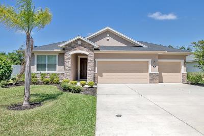 Hunters Ridge Single Family Home For Sale: 14 Abacus Avenue