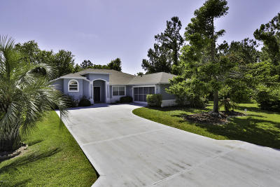 Palm Coast Single Family Home For Sale: 23 Freeland Lane