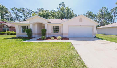Palm Coast Single Family Home For Sale: 84 Ramblewood Drive