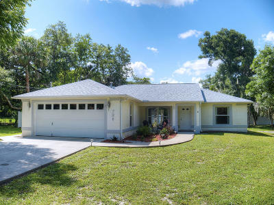 New Smyrna Beach Single Family Home For Sale: 720 Phyllis Avenue