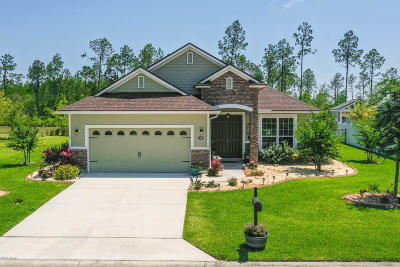 Palm Coast Single Family Home For Sale: 108 S Spoonbill Drive