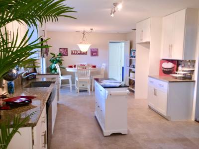 Ormond Beach Single Family Home For Sale: 1225 Parkside Drive