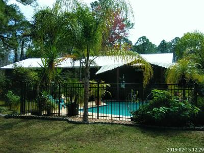 Edgewater Single Family Home For Sale: 3131 Citrus Drive