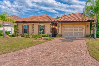Ormond Beach Single Family Home For Sale: 707 Woodbridge Court
