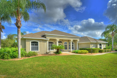 Port Orange Single Family Home For Sale: 5950 Raleigh Barrows Court