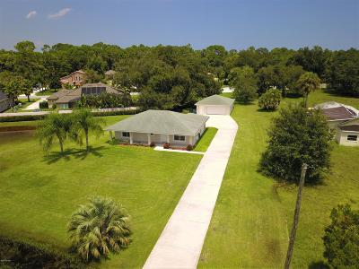 New Smyrna Beach Single Family Home For Sale: 2843 Pioneer Trail