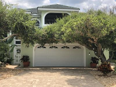 Ponce Inlet, South Daytona, Wilbur-by-the-sea Single Family Home For Sale: 4896 S Atlantic Avenue