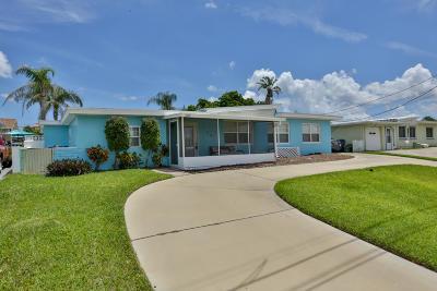 Port Orange Single Family Home For Sale: 3917 Cardinal Boulevard