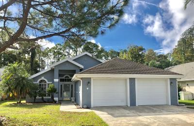 Daytona Beach Single Family Home For Sale: 36 Cormorant Circle