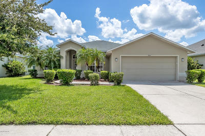 Port Orange Single Family Home For Sale: 1800 Creekwater Boulevard