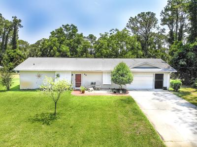 Palm Coast Single Family Home For Sale: 69 Perthshire Lane