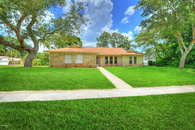 Port Orange Single Family Home For Sale: 733 Prospect Point Drive