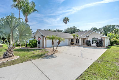 New Smyrna Beach Single Family Home For Sale: 2615 Turnbull Estates Drive