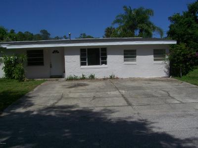 New Smyrna Beach Single Family Home For Sale: 173 Temple Street