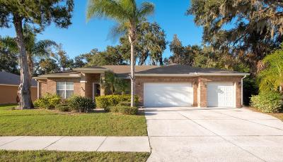 South Daytona Single Family Home For Sale: 3368 Country Manor Drive