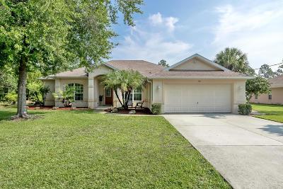 Palm Coast Single Family Home For Sale: 93 Renshaw Drive