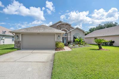 Port Orange Single Family Home For Sale: 6289 Palm Vista Street