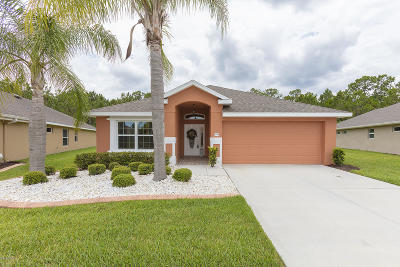 Port Orange Single Family Home For Sale: 1753 Weeping Elm Circle