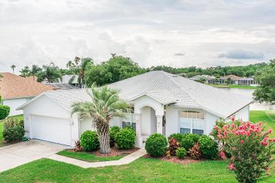 Port Orange Single Family Home For Sale: 6403 Adrianne Court
