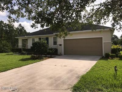 Daytona Beach Single Family Home For Sale: 173 Springberry Court