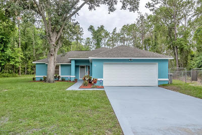 Palm Coast Single Family Home For Sale: 13 Zammer Court