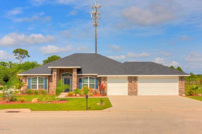 Flagler Beach Single Family Home For Sale: 30 Turtle Ridge Drive