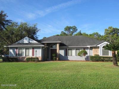 Daytona Beach Single Family Home For Sale: 544 Spotted Sandpiper Drive