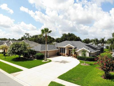 Port Orange Single Family Home For Sale: 6116 Sanctuary Garden Boulevard